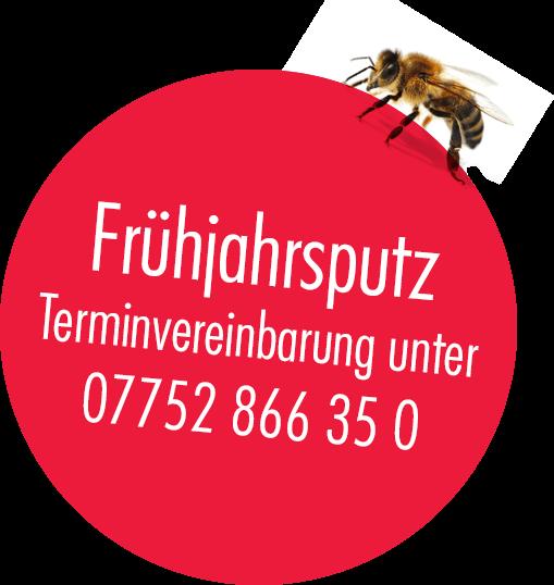 Fruehjahrsputz_Button